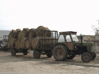 Utilaje la ferma de bovine de la Slobozia