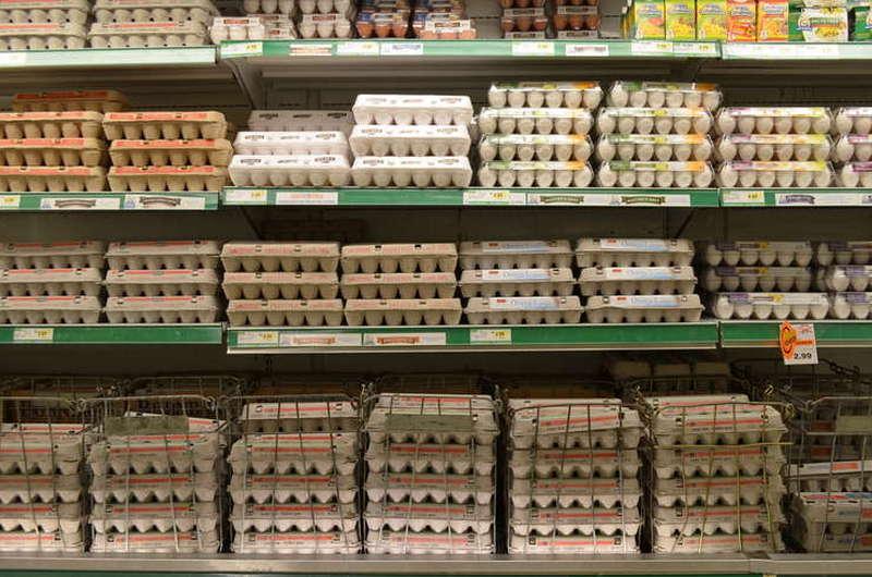 Cofrage cu oua expuse la raft pentru vanzare