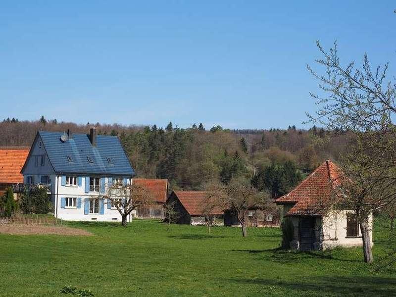 Dezvoltarea Rurală