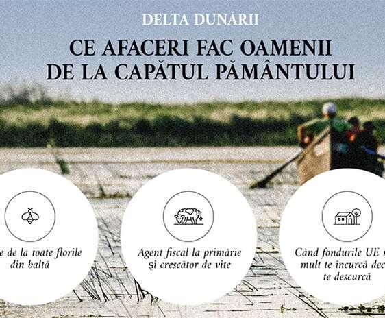 Afaceri in Delta Dunarii